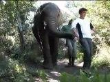 Plettenberg bay Forever Resort - South Africa Travel Channel 24