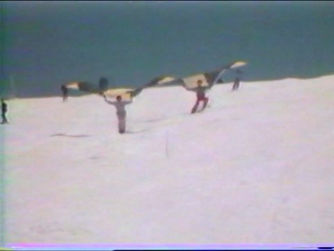 BIRDSAIL 1982 Roland LE BAIL