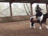 Équitation - voltige au centre équestre du moulin du Goutay dans le 87 en Limousin