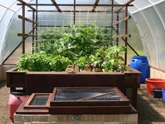 The Ultimate Strategy For how to Build Aquaponics Systems