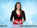 Aquatic Care, Tropical Fish Jacksonville, FL  Tropical Fish 904 588 2700 Jacksonville, FL  Tropical Fish