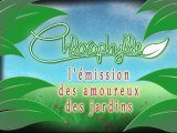 Chlorophylle épisode 3 sur Télé Doller