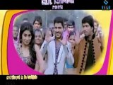 Nuvva Nena - Vayyaru Black Berry Official Video Song, Hot Shriya With Sharwanand And Naresh