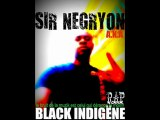 sir negryon - la qualité s'honore