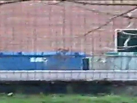 Intervention du Raid à Toulouse filmée par un riverain