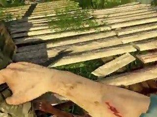 De la drogue au sang ! de Far Cry 3