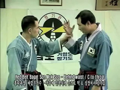 Jungki Kwan Hapkido teaser - CHOI Yong-Sul Orthodox Hapkido
