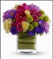 Flowers Houston, Florist Roses Online, Flowers Delivery Houston