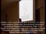 Neurologia 26 - Lenguaje consciencia y cuerpo calloso - Prof Manuel Lafarga