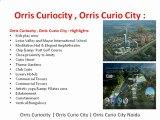 Orris Curiocity , Orris Curio city