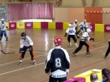 Roller hockey, match Cavaillon / RPM le 18-03-2012 (match aller)