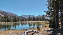 Road Trip aux USA Part 11 : Yosemite Park et Mono Lake - Californie