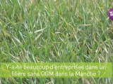 """23 mars 2012 - Un nouvel étiquettage """"sans OGM"""""""