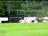 Neymar Yine Hayran Bıraktı