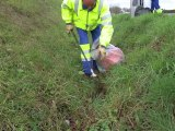 Nettoyage des routes en Anjou