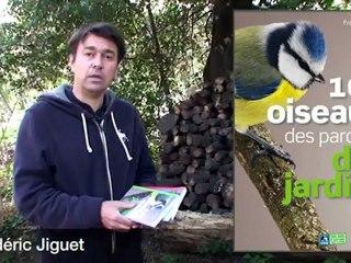 100 oiseaux des parcs et des jardins - Frédéric Jiguet