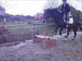 Saut d'obstacle à pieds ou à cheval...