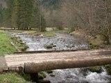 Espaces naturels sensibles : les grands sites départementaux.
