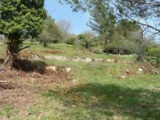 ACHAT/VENTE terrain VALBONNE video immozip