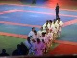 Experts et champions de karaté - Festival des arts martiaux - Bercy 2012