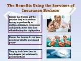 Public Liability Insurance Brokers Vs Online Quotes