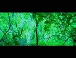 Ghost Bande d'annonce VO sous-titres français
