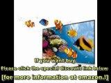 LG Cinema Screen 55LM7600 55-Inch Cinema 3D 1080p Review   LG Cinema Screen 55LM7600 For Sale