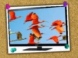 Panasonic VIERA TC-L42E50 42-Inch 1080p Full HD IPS LED-LCD TV Review | Panasonic VIERA TC-L42E50 For Sale