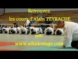 Stage d'Aïkido Traditionnel avec Alain PEYRACHE à Dardilly (69) juin 2012