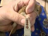 Les oiseaux migrateurs de passage à Porquerolles