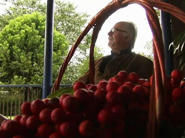 A 80 ans, l'heure de la retraite n'a pas sonné pour Botero