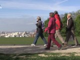 Balade nature à la découverte des parcs et jardins de Montreuil