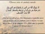 Ceci est l'islam - cheikh saleh aal cheikh