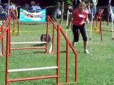 Délisse jumping chateauroux 07-11