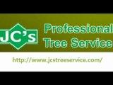 Austin Tree Specialists  l tree trimming austin texas l Austin Tree Service