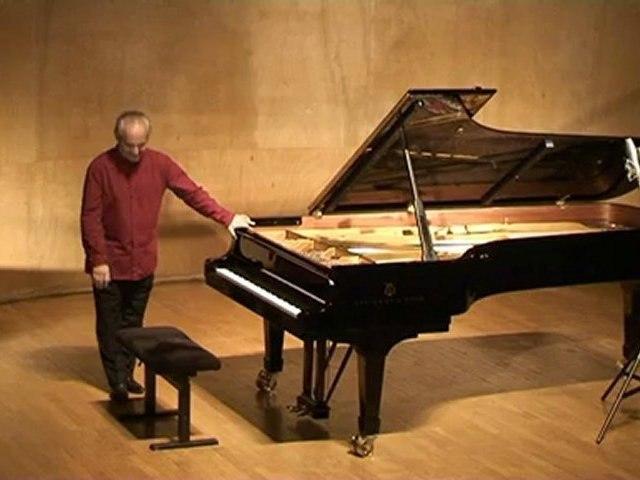 Chopin - Etude en La bemol majeur Opus 25 n°1