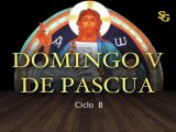 Videocatequesis domingo V de Pascua-B