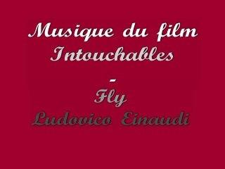 Musique du film Intouchables - Fly - Ludovico Einaudi - Piano