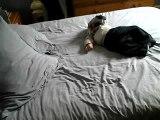 Gazouillis sur le lit!
