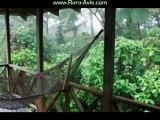 Costa Rica Rainforest Lodge RARA AVIS