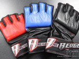 Revgear Challenger MMA and Grappling Glove - Combat ...