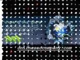 Online Blogging Sites