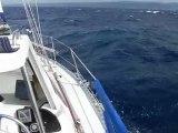 Navigation dans la rade de Hyeres
