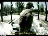 Un ganso, protagonista de spot del Gobierno vasco