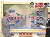 20120523 「独占状態」の電力事情 家庭の電気代は安くなる?