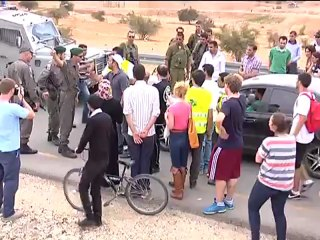 """PALESTINE LE VISAGE DE L'OCCUPATION """"La brutalité contre les étrangers Militant(E)s"""""""