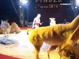 Le cirque Pinder à Clermont