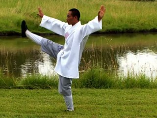 Tai Chi Chuan by a Shaolin Monk in Nature - Zenitude Experience