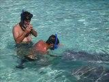 Polynésie - Moorea - Nager avec les raies