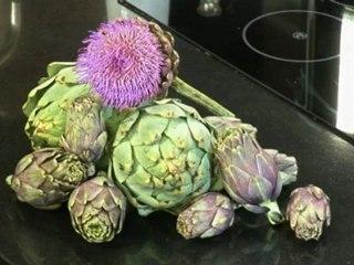 Lernen Sie Artischocken richtig zu putzen und im Ganzen zubereiten auf www.321kochen.tv